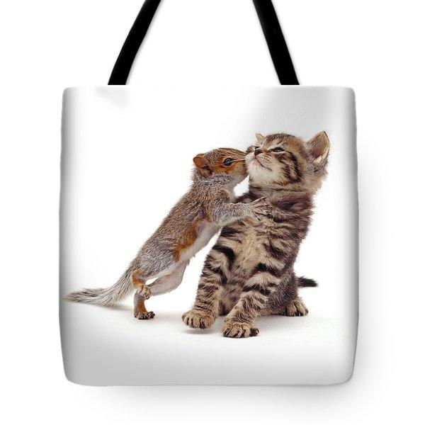 Squirrel Kiss Tote Bag