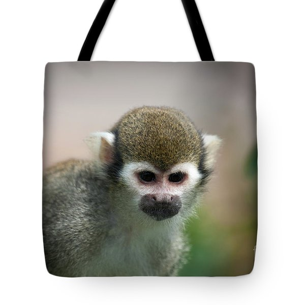 Squirrel Monkey Tote Bag by Amanda Elwell