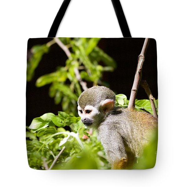 Squirrel Monkey Youngster Tote Bag