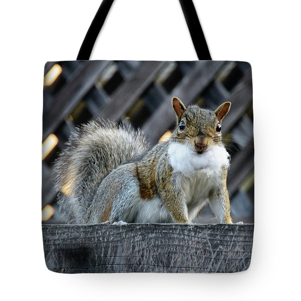 Tote Bag featuring the photograph Squirrel Playing Santa by Susan Wiedmann