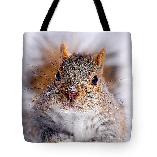 Squirrel Portrait Tote Bag by Mircea Costina Photography