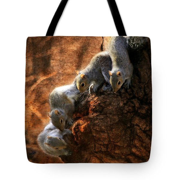 Squirrels - A Family Affair X Tote Bag by Aurelio Zucco