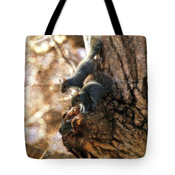 Squirrels - A Family Affair Xii Tote Bag by Aurelio Zucco