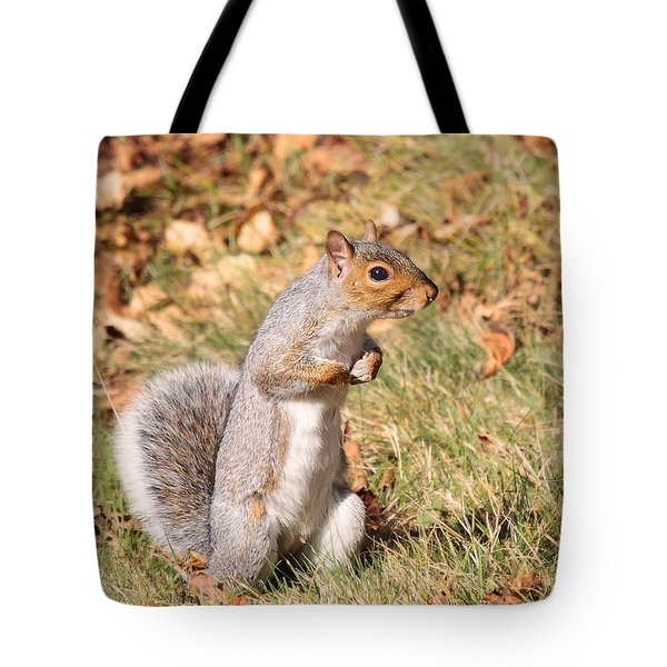 Squirrely Me Tote Bag