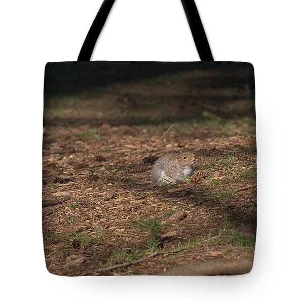 Squirrrrrrel? Tote Bag
