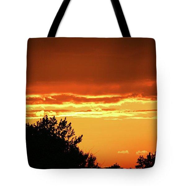 Tote Bag featuring the photograph Ssl-1 by Ellen Lentsch