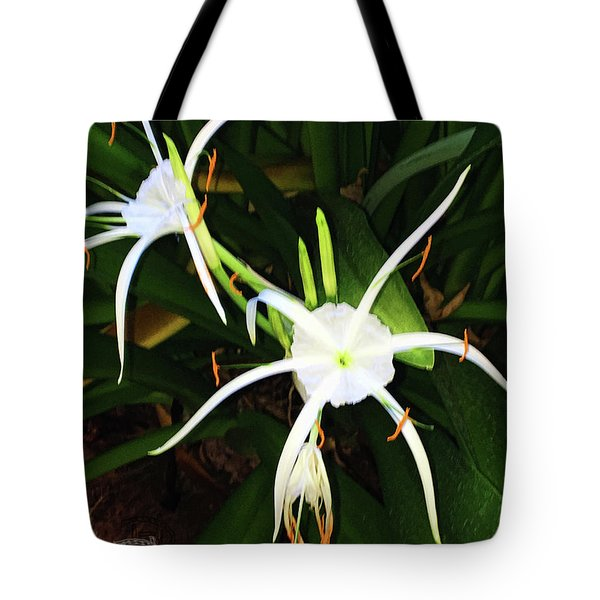 St. A S Spider Flower Couple Tote Bag by Daniel Hebard