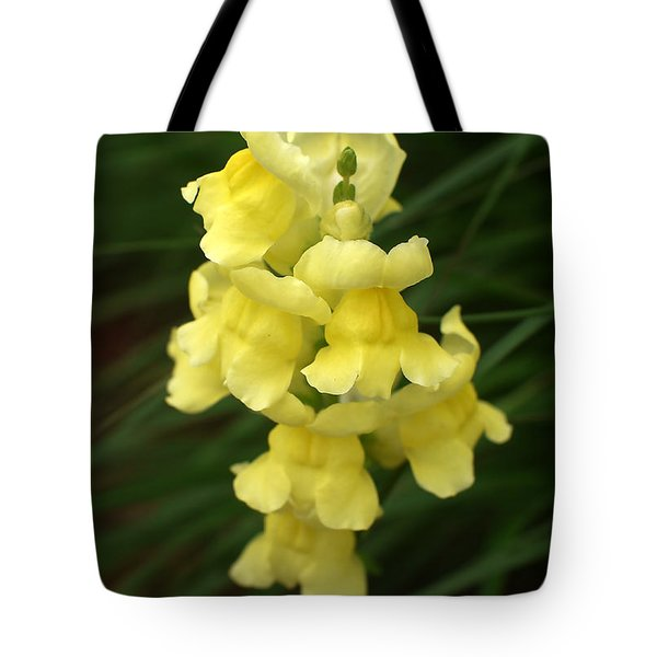 St. Johns Flower 866 Tote Bag