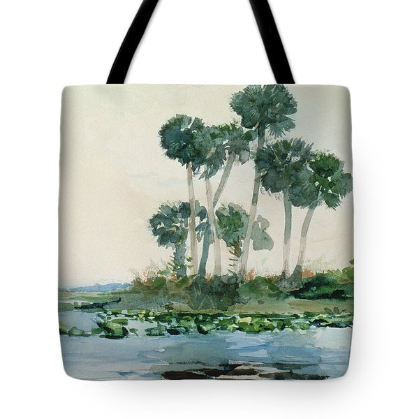 St John's River Florida Tote Bag