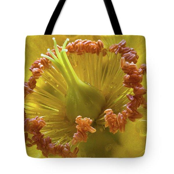 St Johns Wort Flower Centre Tote Bag