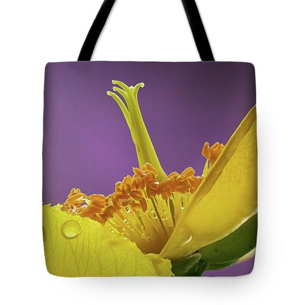 St Johns Wort Flower Tote Bag