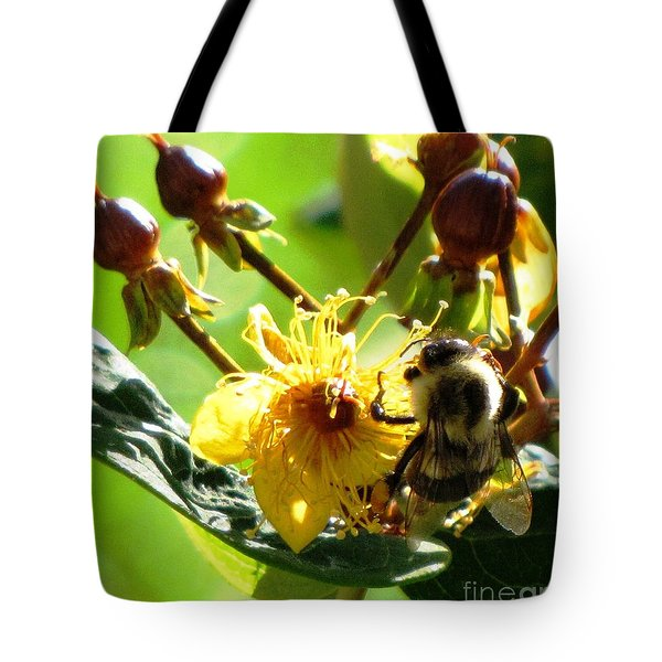Tote Bag featuring the photograph St. John's Wort by Melissa Stoudt