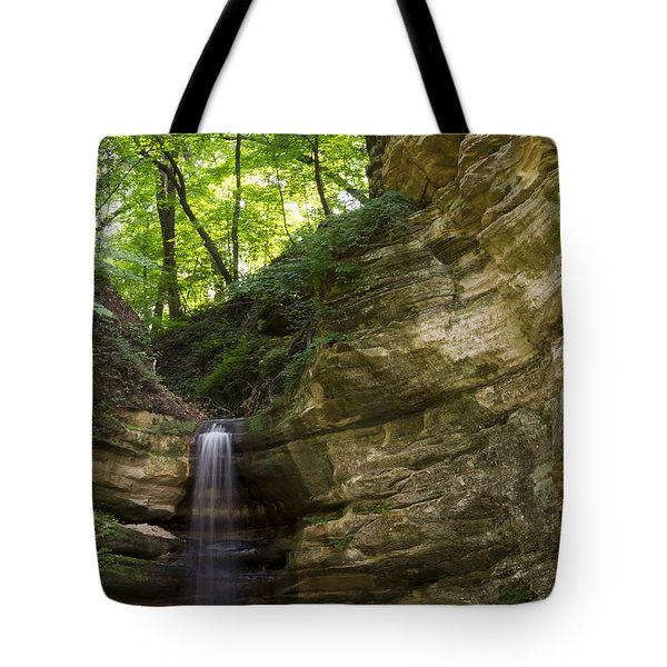 St. Louis Canyon Tote Bag by Larry Bohlin
