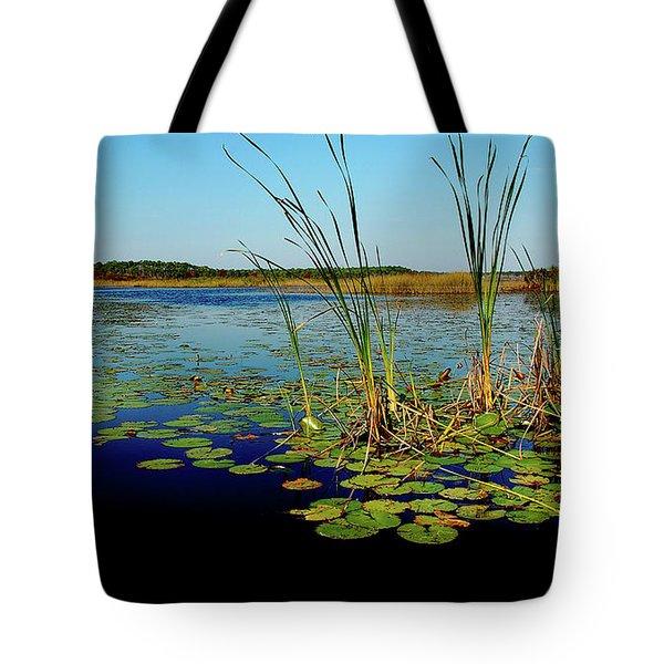 St. Mark's Lake Tote Bag