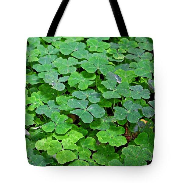 St Patricks Day Shamrocks - First Green Of Spring Tote Bag by Christine Till