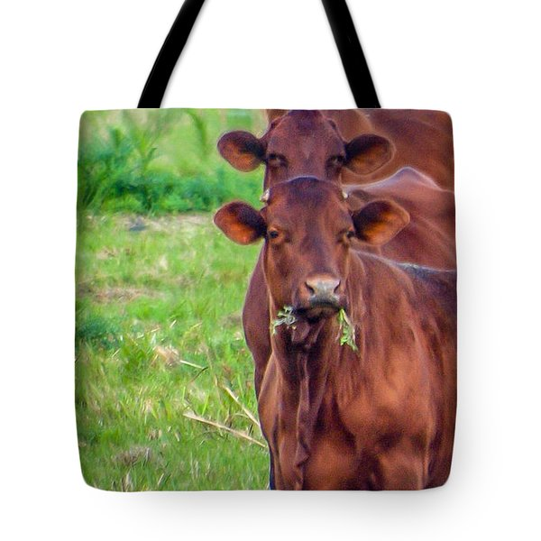 Tote Bag featuring the photograph Stacked Up Cows          by Tom Claud
