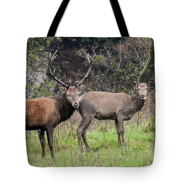 Stag And Doe  Tote Bag
