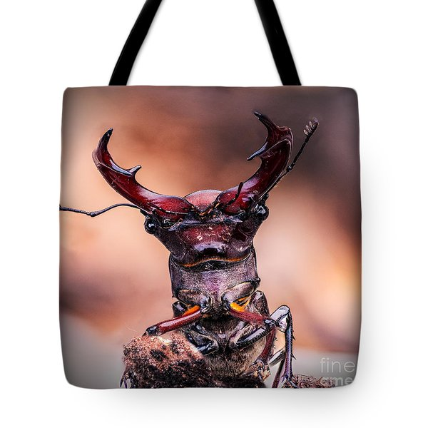 Stag Beetle Stare Down Tote Bag