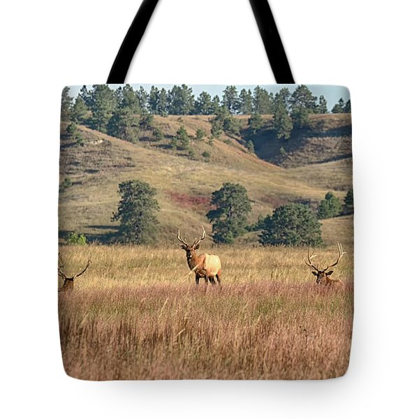 Stag Party Tote Bag