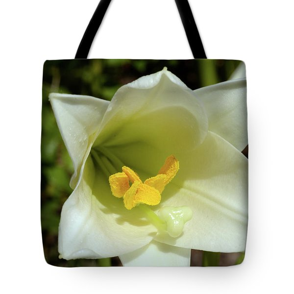 Stage Light Tote Bag