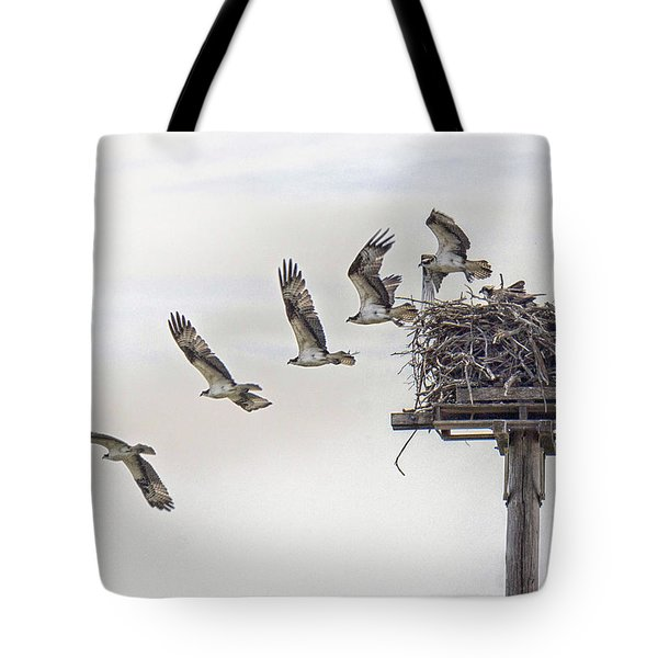 Tote Bag featuring the photograph Stages Of Departure by Constantine Gregory