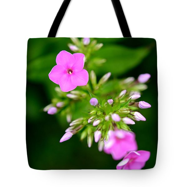Tote Bag featuring the photograph Stages Of Spring by Corinne Rhode