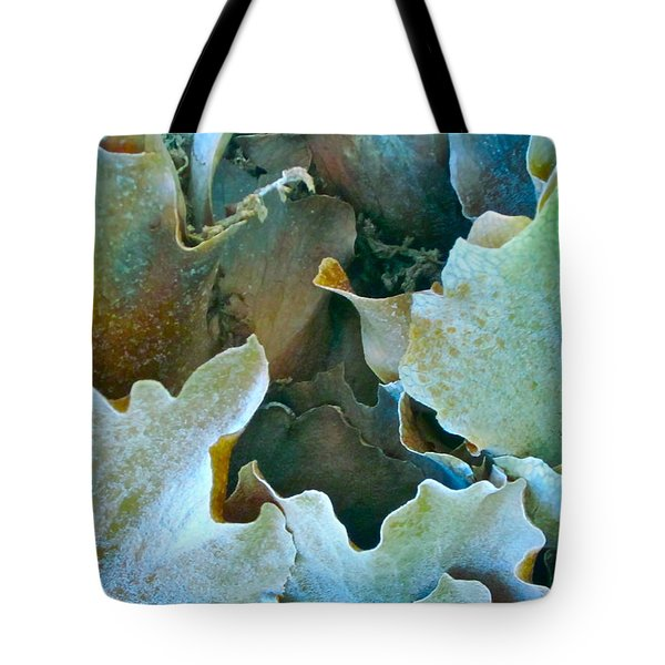 Staghorn Forest Tote Bag by Gwyn Newcombe