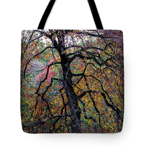 Staind Glass Tree 3 Tote Bag by Kevin Blackburn