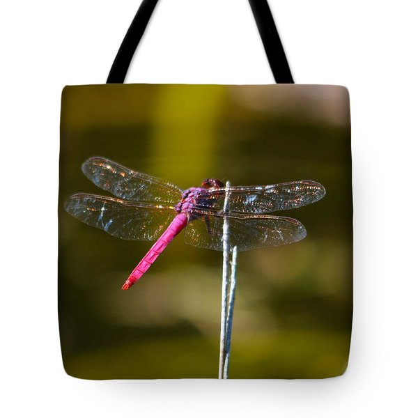 Stained Glass Wings Tote Bag