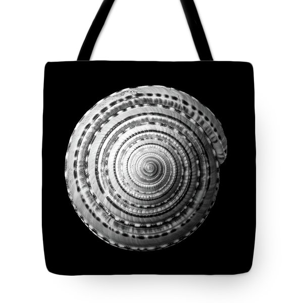 Staircase Or Sundial Shell  In Black And White Tote Bag by Jim Hughes