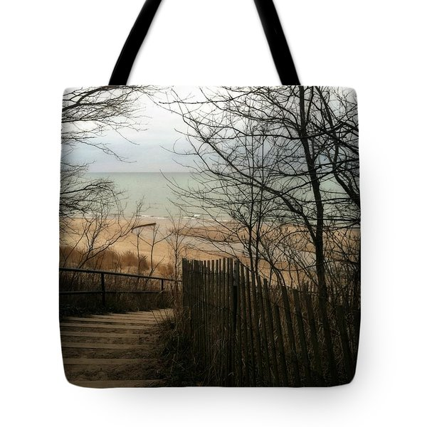 Tote Bag featuring the photograph Stairs To The Beach In Winter by Michelle Calkins