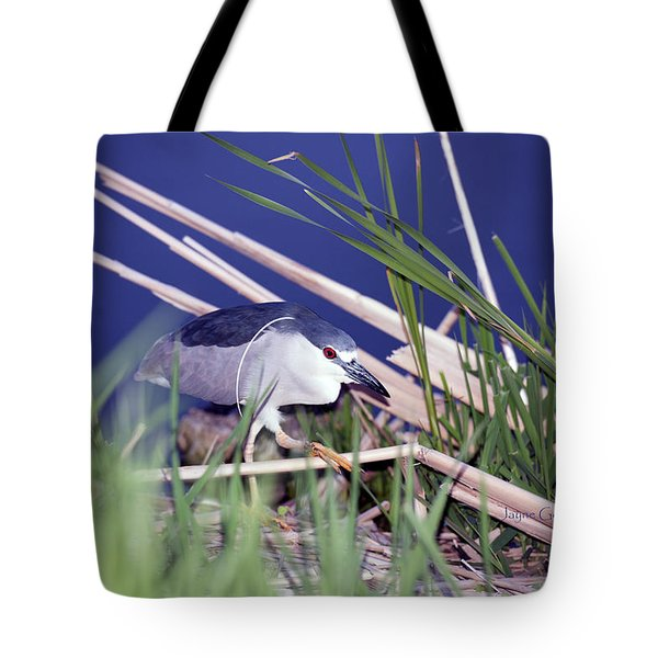 Stalking Black Crowned Night Heron Tote Bag