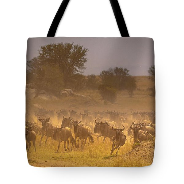 Stampede-serengeti Plain Tote Bag