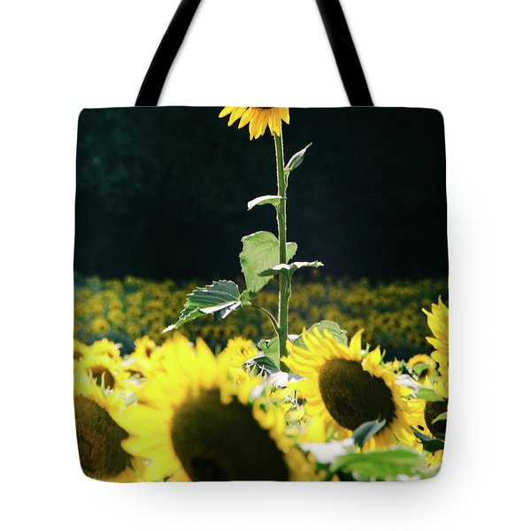 Tote Bag featuring the photograph Stand Out 2 by Andrea Anderegg