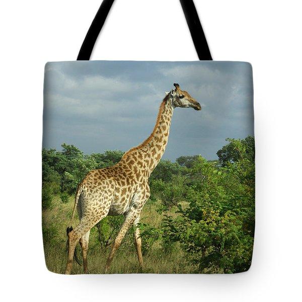Standing Alone - Giraffe Tote Bag
