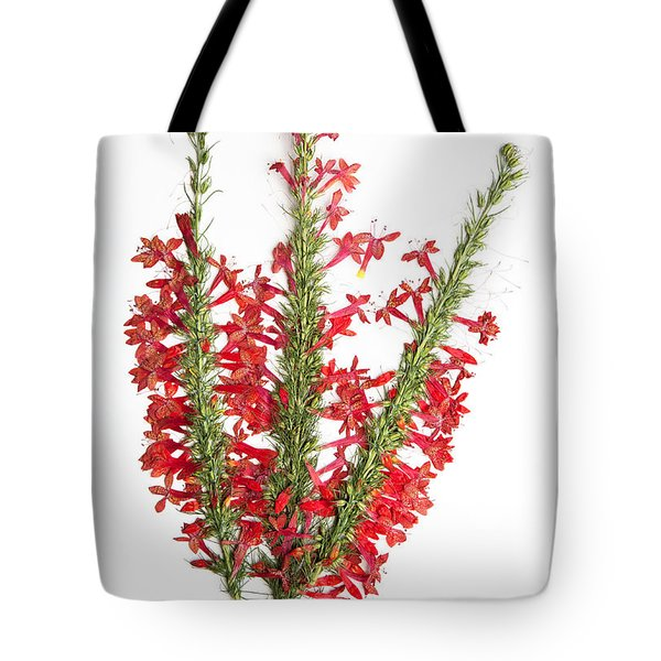 Standing-cypress Tote Bag