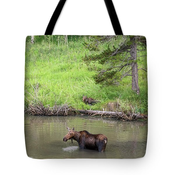 Tote Bag featuring the photograph Standing Guard by James BO Insogna