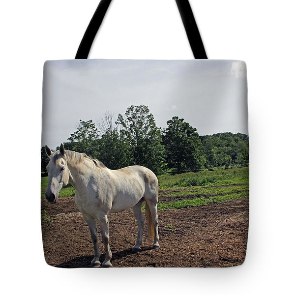Standing Tote Bag