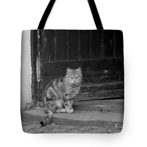 Standing Guard Tote Bag by Mike McGlothlen