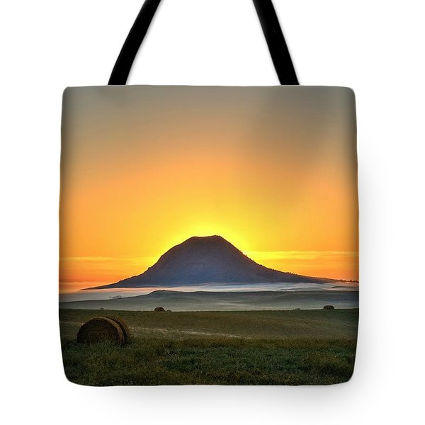 Standing In The Shadow Tote Bag
