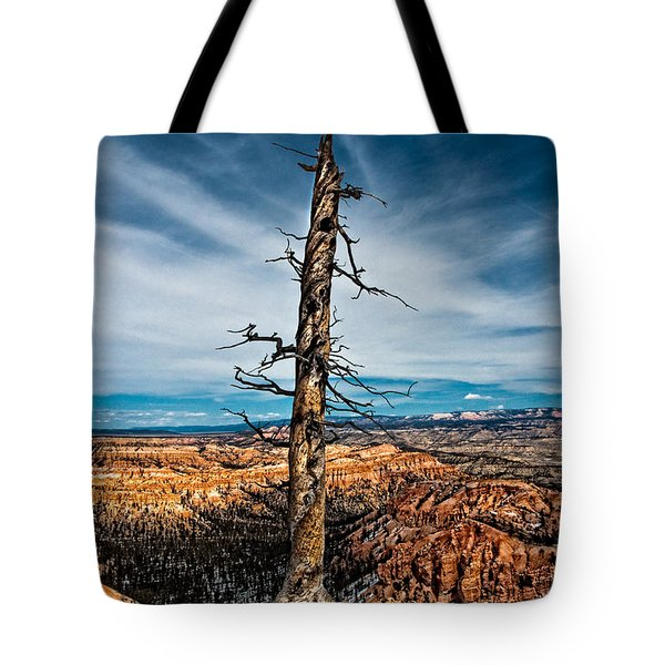 Standing Regardless Tote Bag by Christopher Holmes