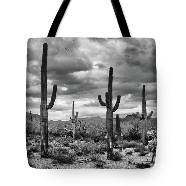 Tote Bag featuring the photograph Standing Saquaros by Monte Stevens