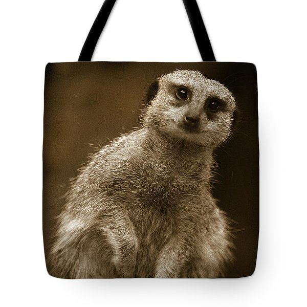 Standing Sentry Tote Bag by Greg Slocum
