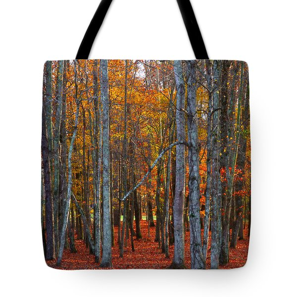 Standing Tall On The Natchez Trace Tote Bag