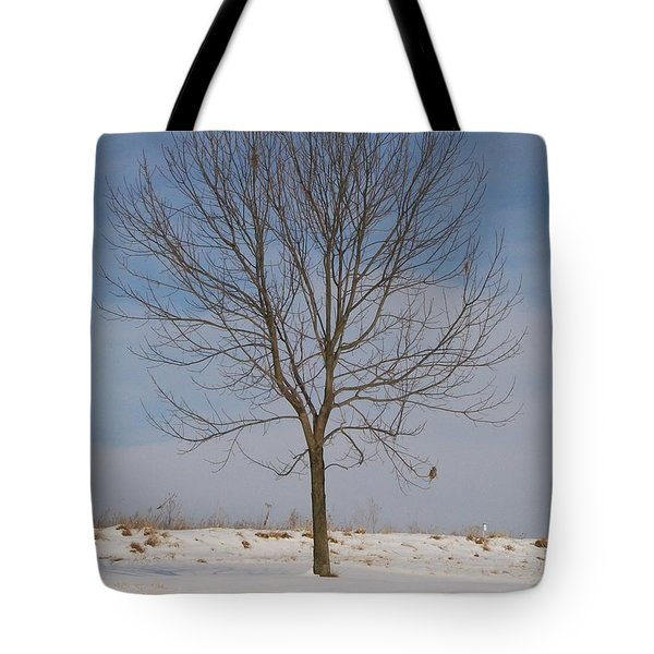 Tote Bag featuring the photograph Standing Tall by Sara  Raber