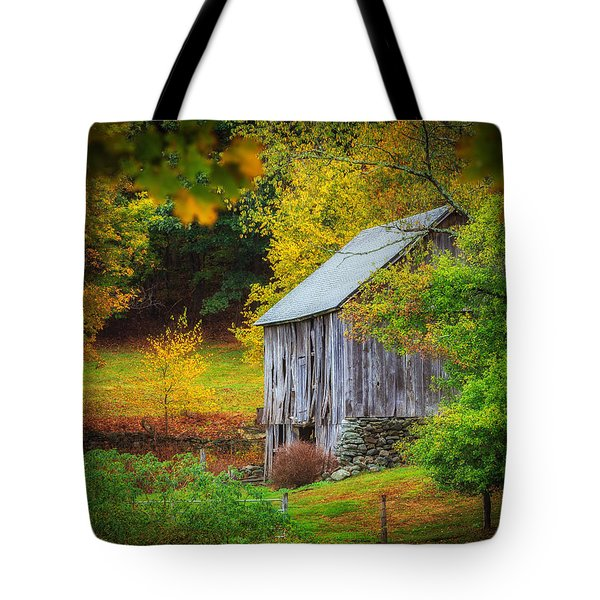 Standing The Test Of Time  Tote Bag