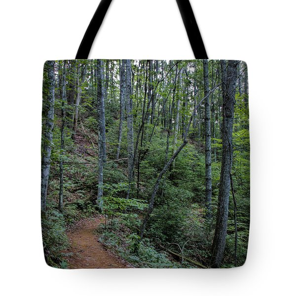 Tote Bag featuring the photograph Stanly Gap Trail by Barbara Bowen