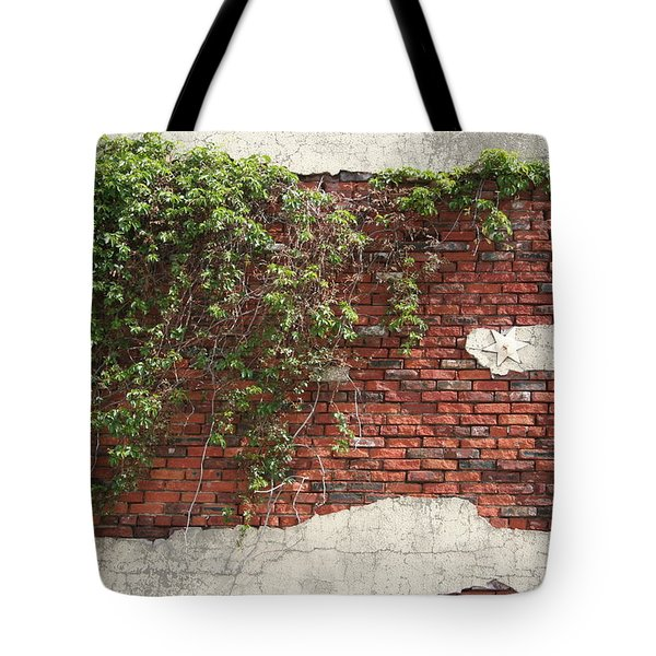 Tote Bag featuring the photograph Star Bricks by Dylan Punke