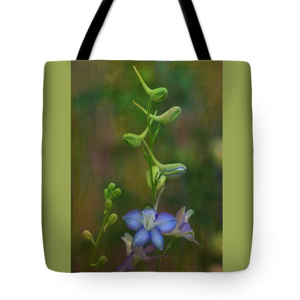 Star Tote Bag by Carolyn Dalessandro