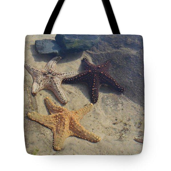 Star Fish Cluster Tote Bag